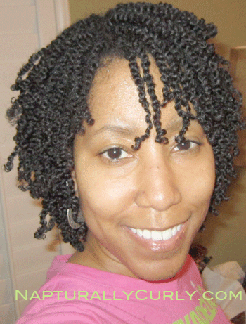 mini twists natural hair