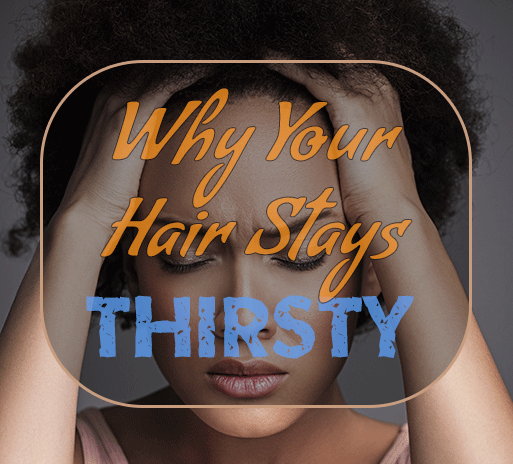 Got Chronically Dry Hair? Here's Why!