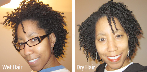 Two Strand Twist Out Wet Vs Dry Hair